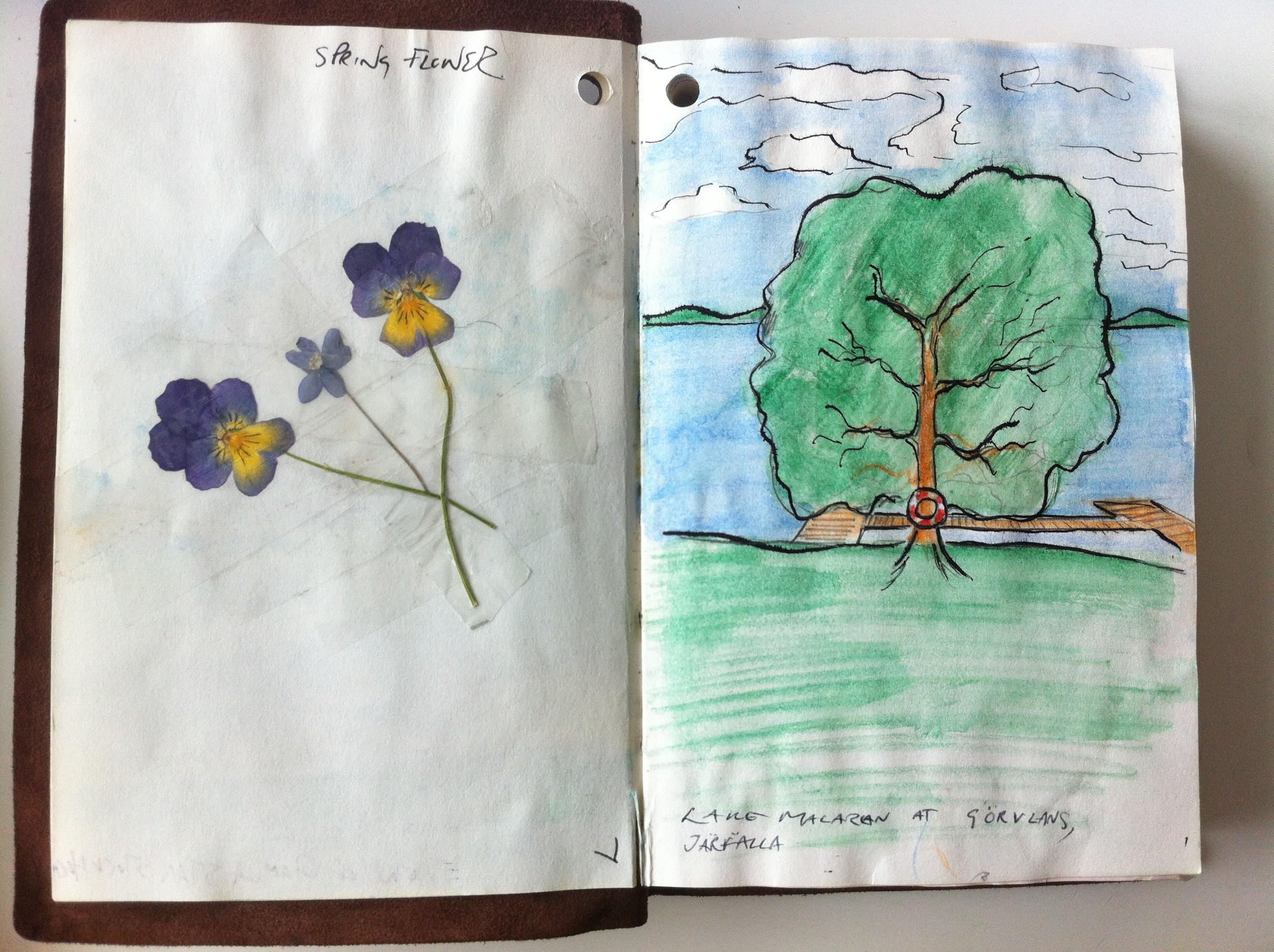Sketch at Görvälns naturreservat near Stockholm from my Sweden Sketchbook